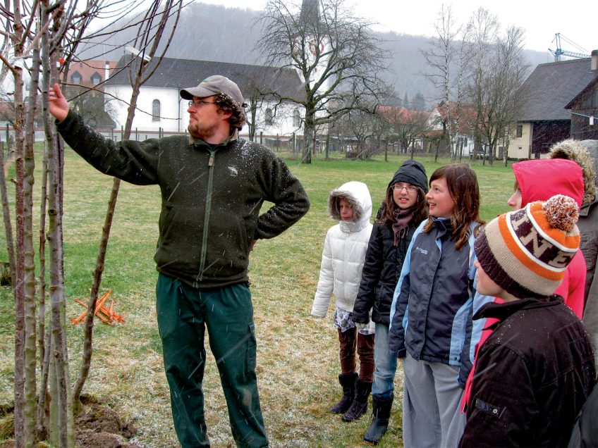 La Salamandre plante 250 arbres dans un verger du Jura