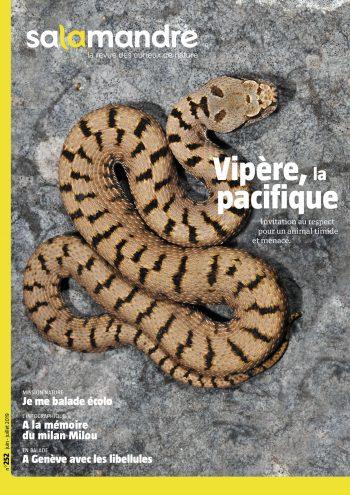 Couverture de La Salamandre n°252