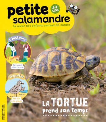 Couverture de La Petite Salamandre n°24