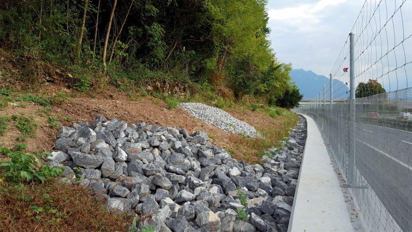 A Montreux, ils protègent les vipères d'un chantier routier
