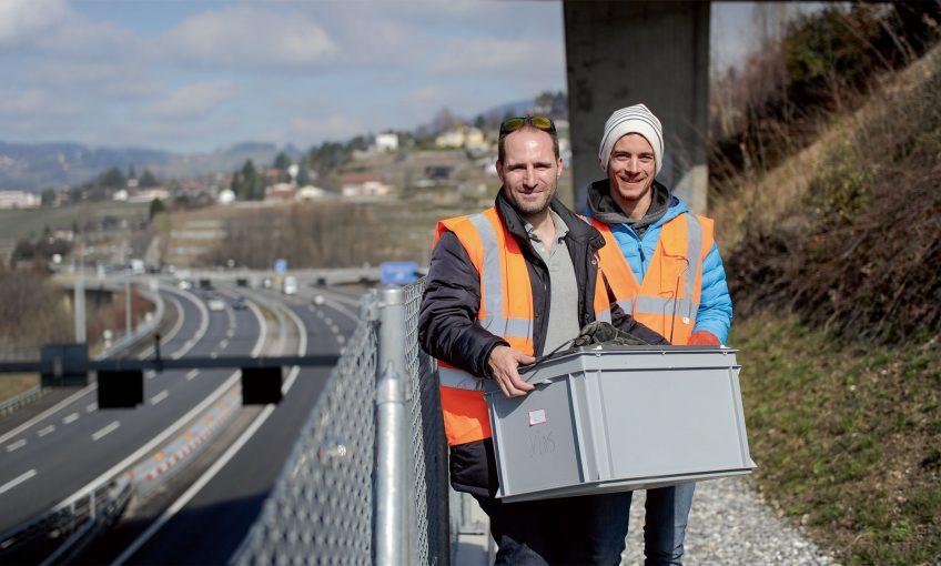 Sylvain Dubey et Joaquim Golay étudient et protègent les vipères aspics non loin de Montreux.