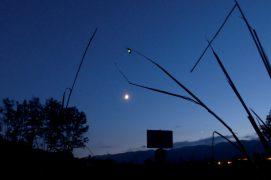 La femelle du vers luisant suspendue au dessus de la lune / © Florian Rochet