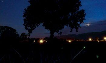 Pollution lumineuse en Pays de Gex