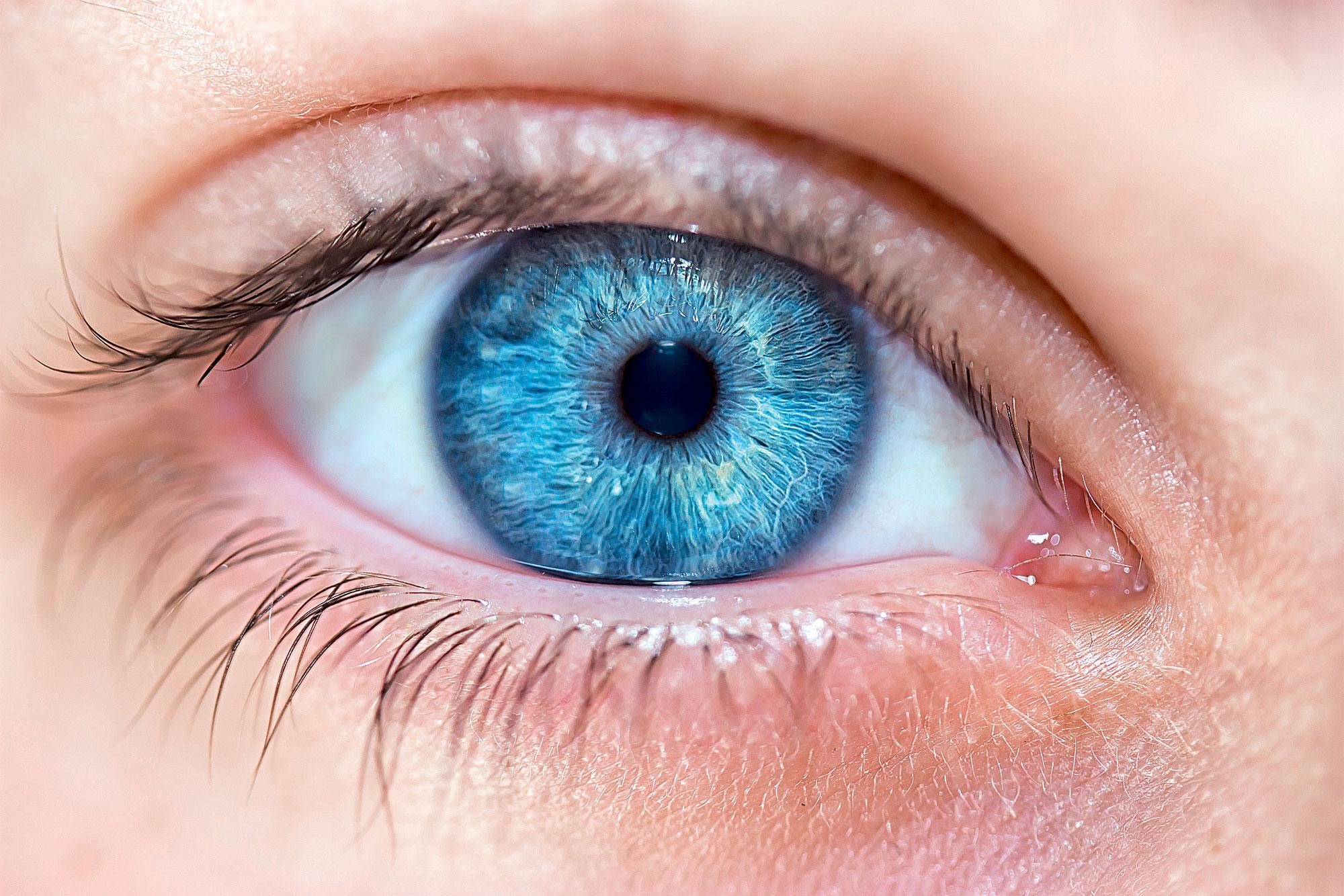 Le bleu, une couleur rare dans la nature