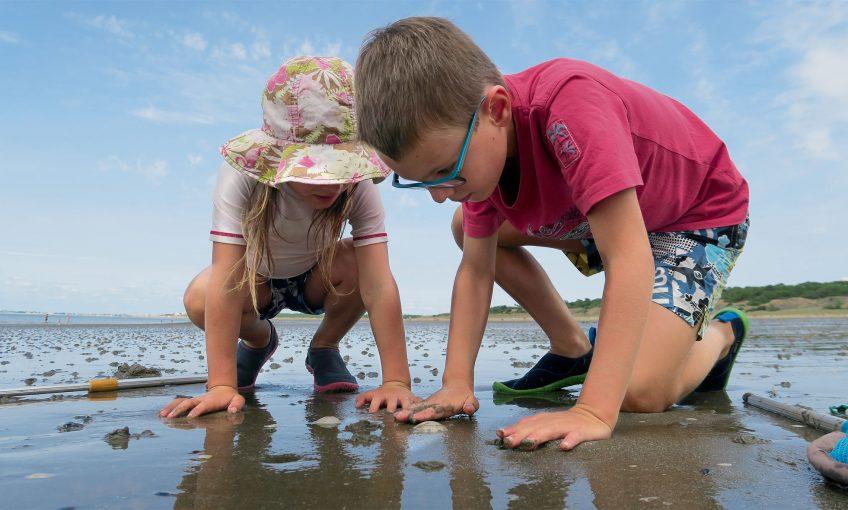 Vacances au bord de l'eau 4 conseils pour respecter la nature