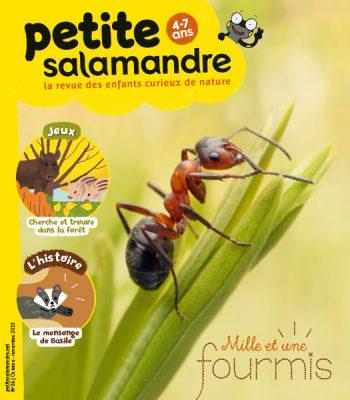 Couverture de La Petite Salamandre n°26