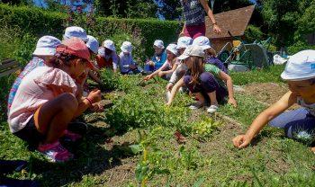 Enfants suisses en train de jardiner