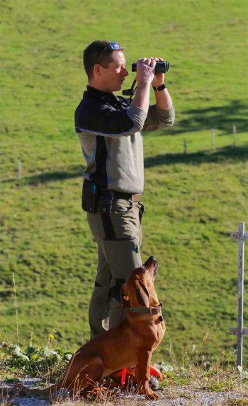 Récit de balade dans les pas du chamois dans les Préalpes fribourgeoises