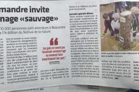 """17.10.19 dans la Côte : La salamandre invite au jardinage """"sauvage"""""""