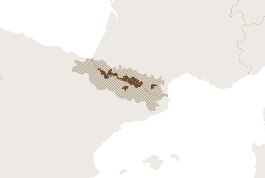 Carte de la répartition de l'ours dans les Pyrénées en 2019