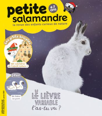 Couverture de La Petite Salamandre n°27
