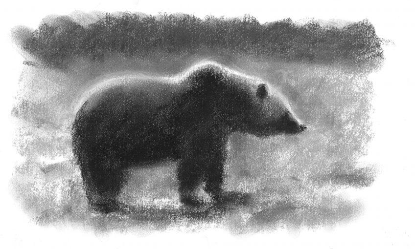 Le peintre Jean Chevallier dévoile ses rencontres avec l'ours