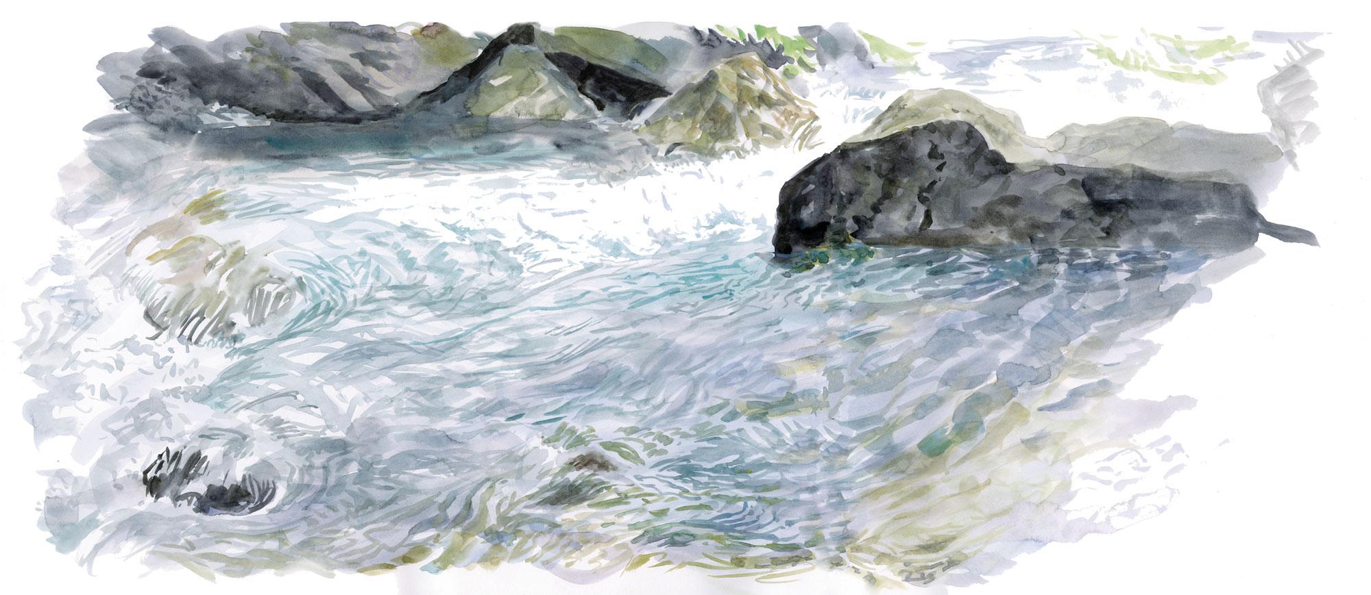 Sorita et Claverina, deux ours pour repeupler les Pyrénées