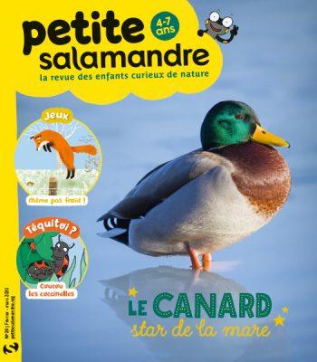 Couverture de La Petite Salamandre n°28