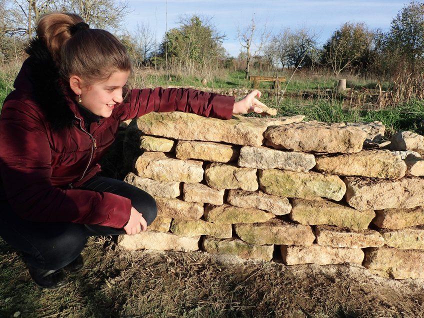 Un mur pour la vie sauvage