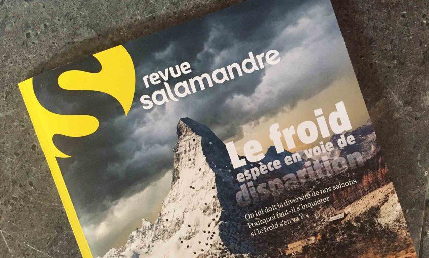 Revue Salamandre 256