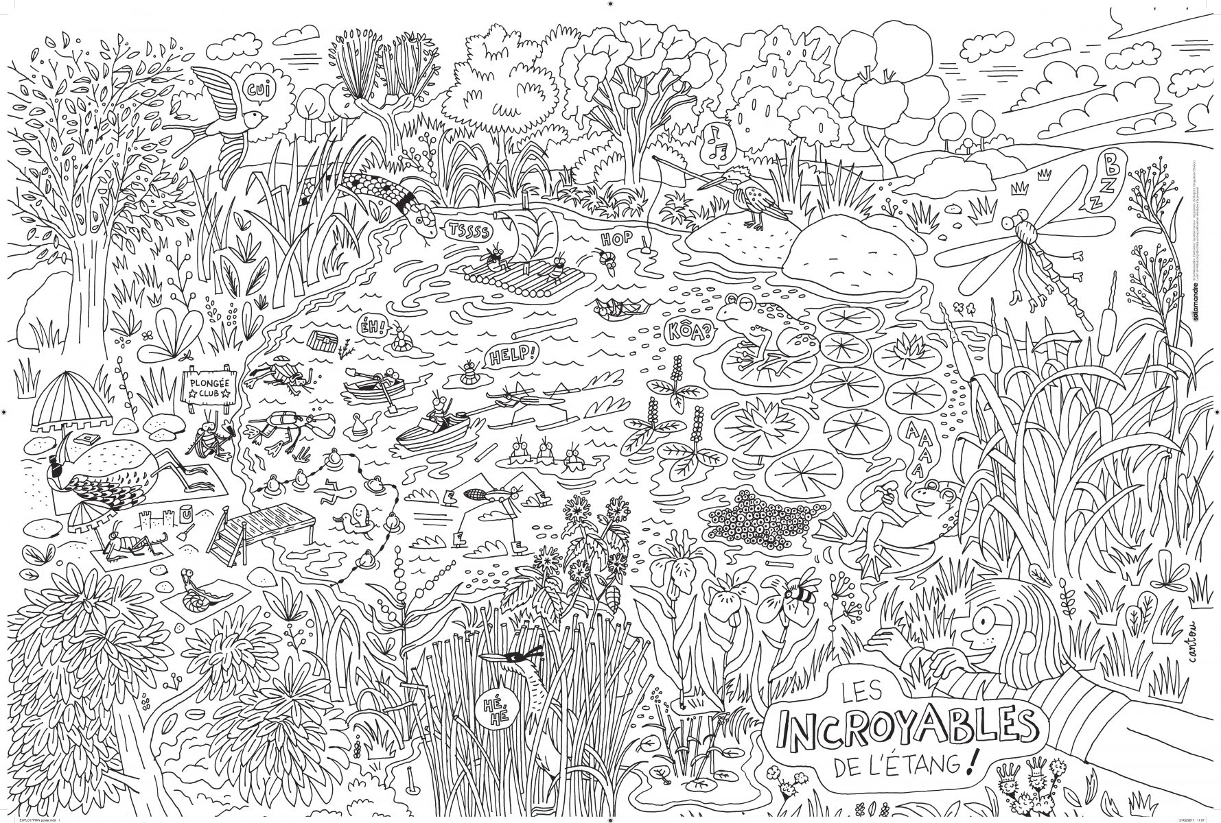 Faites Le Plein De Coloriages Nature Pour Vos Enfants La Salamandre