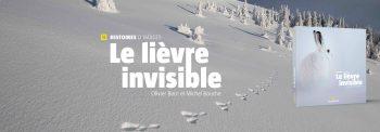 Header Présentation Le lièvre invisible