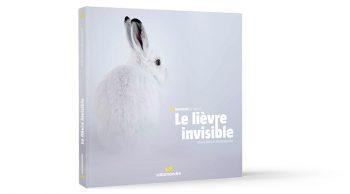 Histoires d'images Le lièvre invisible