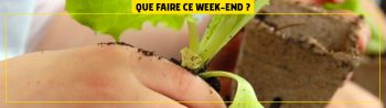 que-faire-ce-weekend-HEADER-18-03-2020