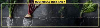 que-faire-ce-weekend-HEADER-test