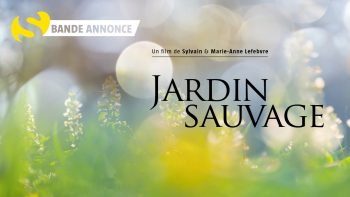DVD JardinSauvage_YouTube Bande annonce_1280x720px