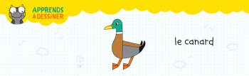 WEB-header-canard