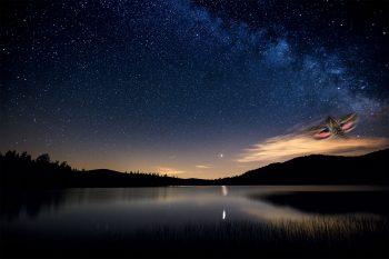 Moins de pollution lumineuse pour aider les papillons de nuit