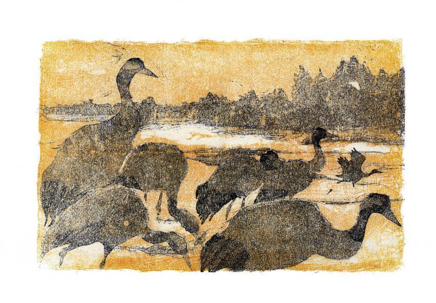 Grues au couchant • lac du Der (Marne) • 24 février 2000 • gravure sur bois