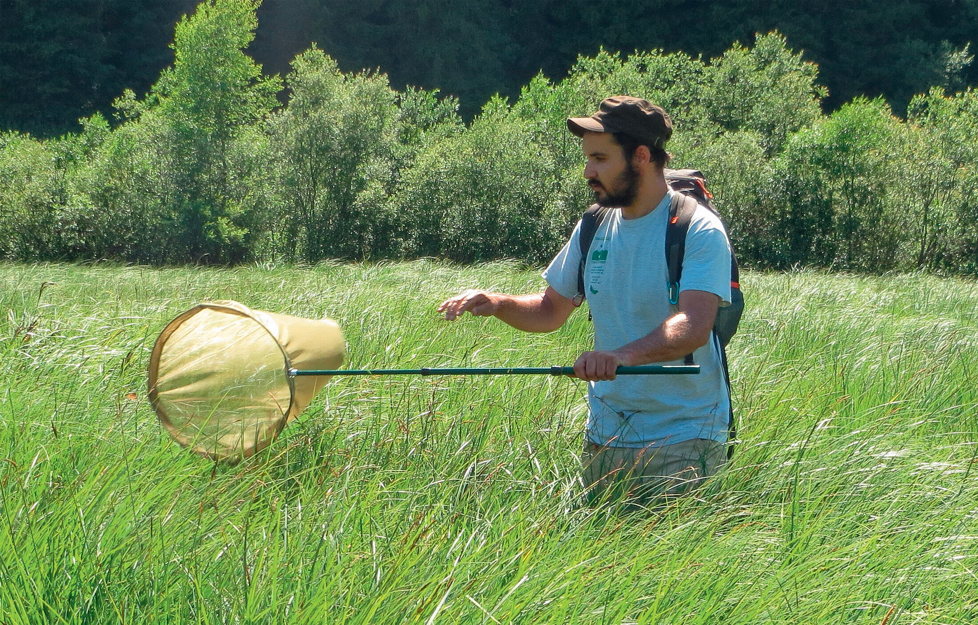 Julien Ryelandt Biologiste au Conservatoire botanique national de Franche-Comté - Observatoire régional des invertébrés. Auteur de la clé d'identification des zygènes de Bourgogne-Franche-Comté.