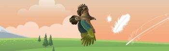 HeaderInfographie_Plumes3