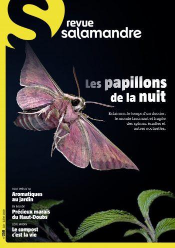 Revue Salamandre 258 papillons de nuit