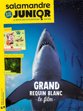 Couverture de La Salamandre Junior n°131