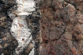 Le liège du chêne (à gauche) et la rhyolite, une roche volcanique.  / © Benoît Demarle