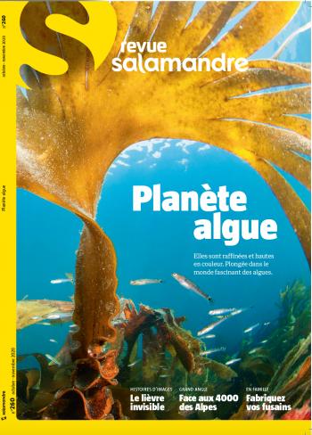 Revue Salamandre 260 Planète algue
