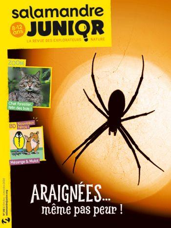 Couverture de La Salamandre Junior n°132