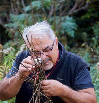 Balade en quête de champignons dans le Jura suisse