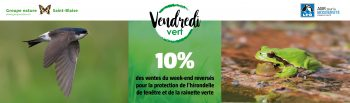 GreenFriday_HeaderBoutique_1400x412_2020