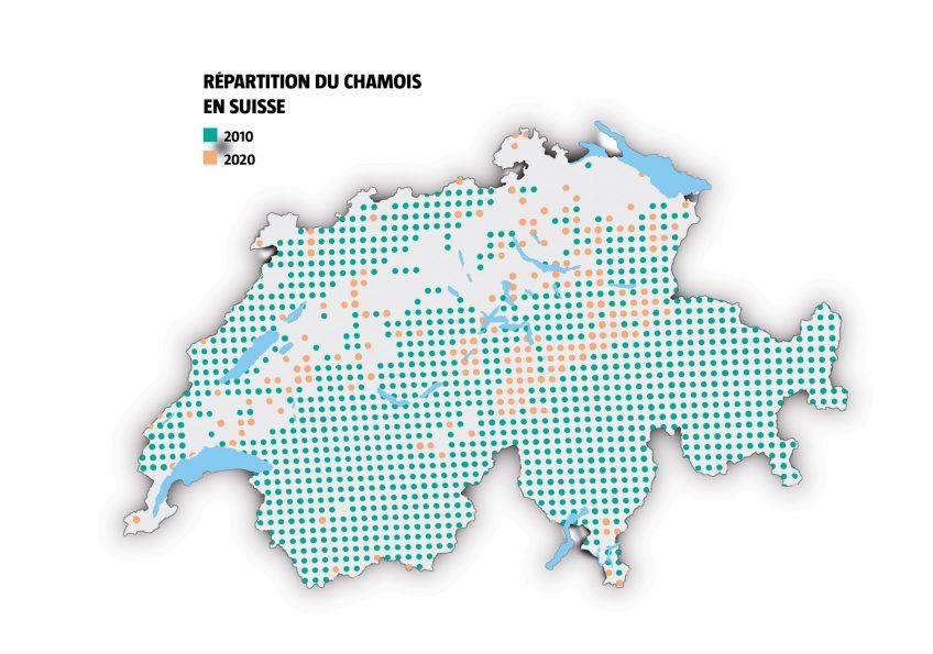 Répartition du chamois en suisse