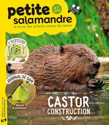 Couverture de La Petite Salamandre n°34
