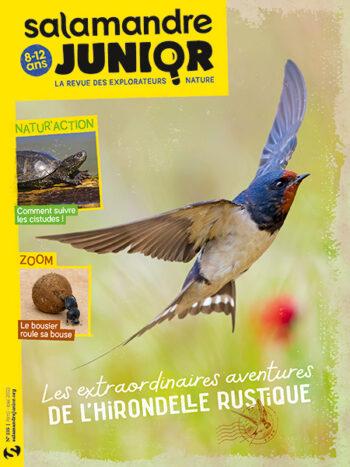 Couverture de La Salamandre Junior n°135
