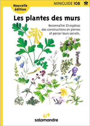 Miniguide 108 Les plantes des murs - La Salamandre