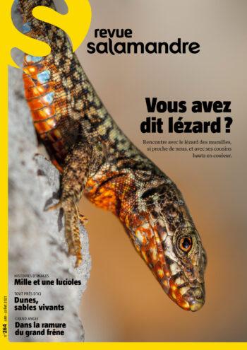 Couverture de La Salamandre n°264