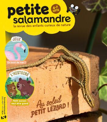 Couverture de La Petite Salamandre n°36