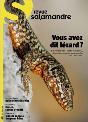 Revue Salamandre 264 lézard