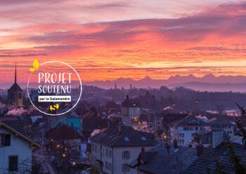 Saint-Blaise, près de Neuchâtel, accueille près de 200 couples d'hirondelles de fenêtre