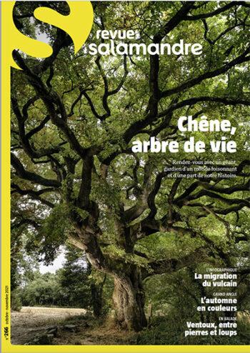Chêne, arbre de vie Revue Salamandre 266