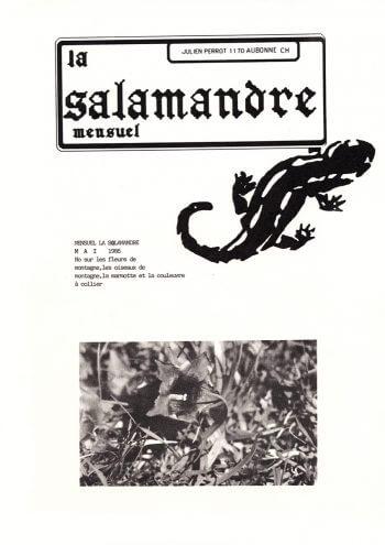 Couverture de La Salamandre n°31