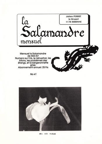 Couverture de La Salamandre n°41