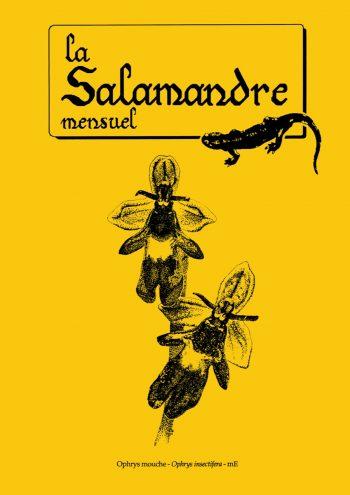 Couverture de La Salamandre n°61